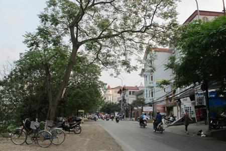 Chuyển văn phòng tại phố Nguyễn Đình Hoàn